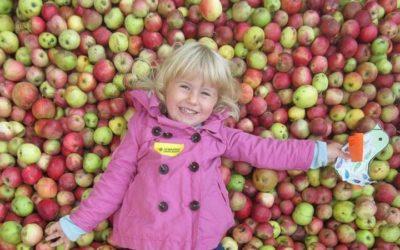 Vrběnka zve na Jablečnou slavnost do Hostětína